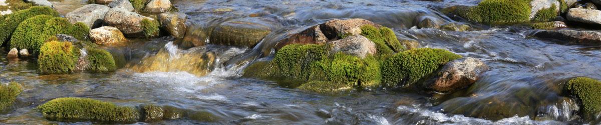 Stenar i bäcken.